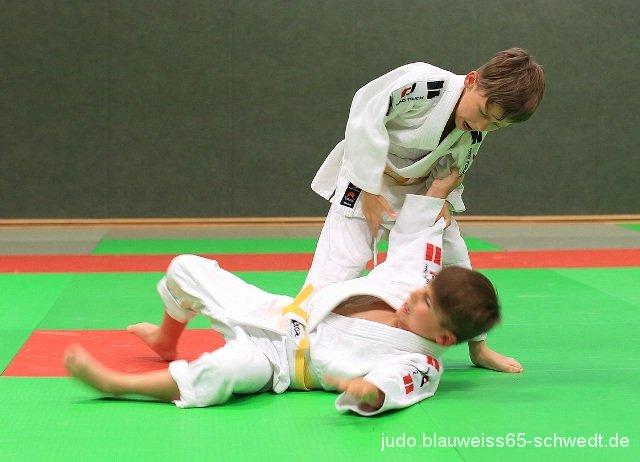 Judokas-Schwedt-Guertelpruefung (14)